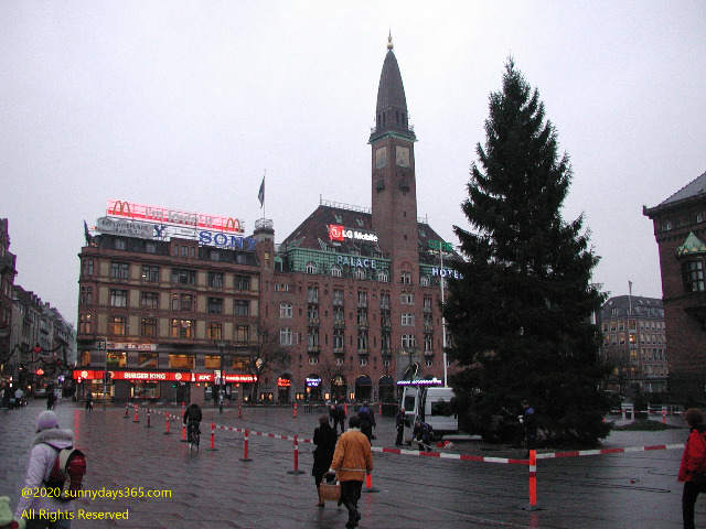 コペンハーゲン中心部に設置された巨大なクリスマスツリー