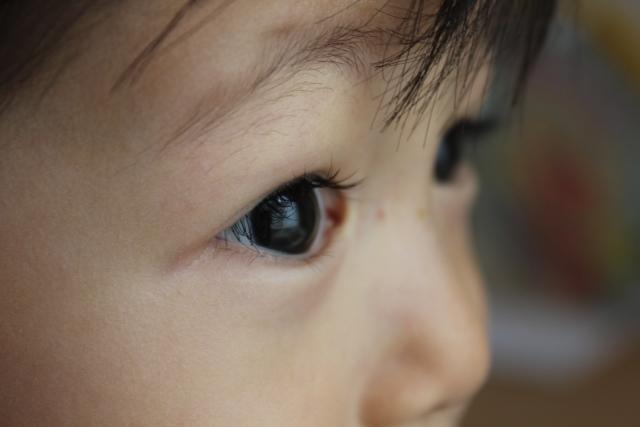 子供の眼球に映った明るい窓際