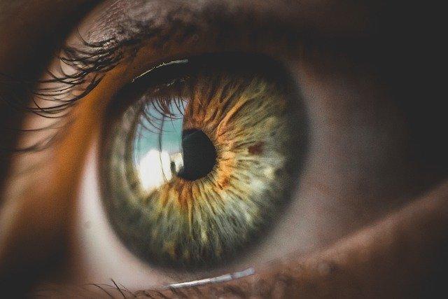 眼球に映った窓際の風景