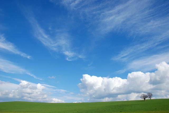 青空が広がる草原