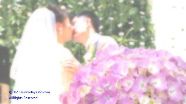 結婚式での誓いの儀式とアジサイの花を合成
